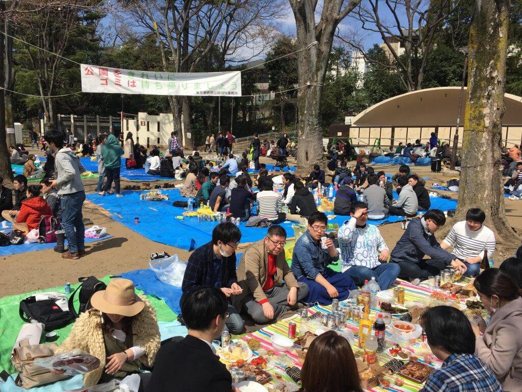 Japanischer Lifestyle: Picknicker im Inokashira-Park, Tokio