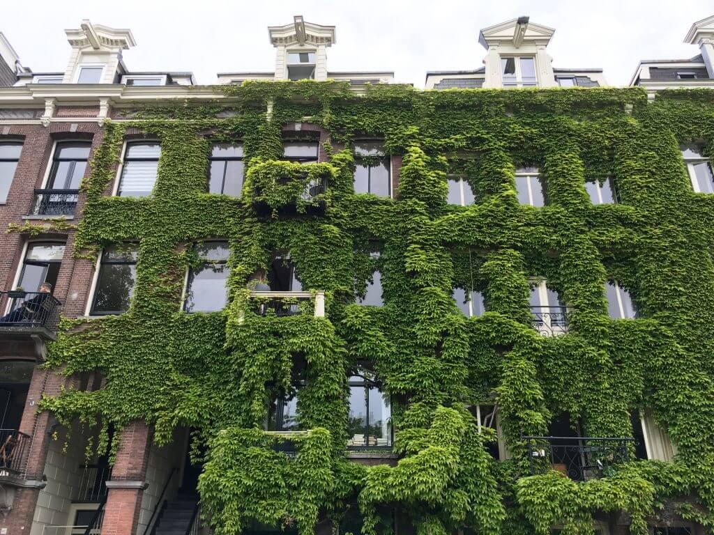 Insidertipp Amsterdam: Sarphatipark