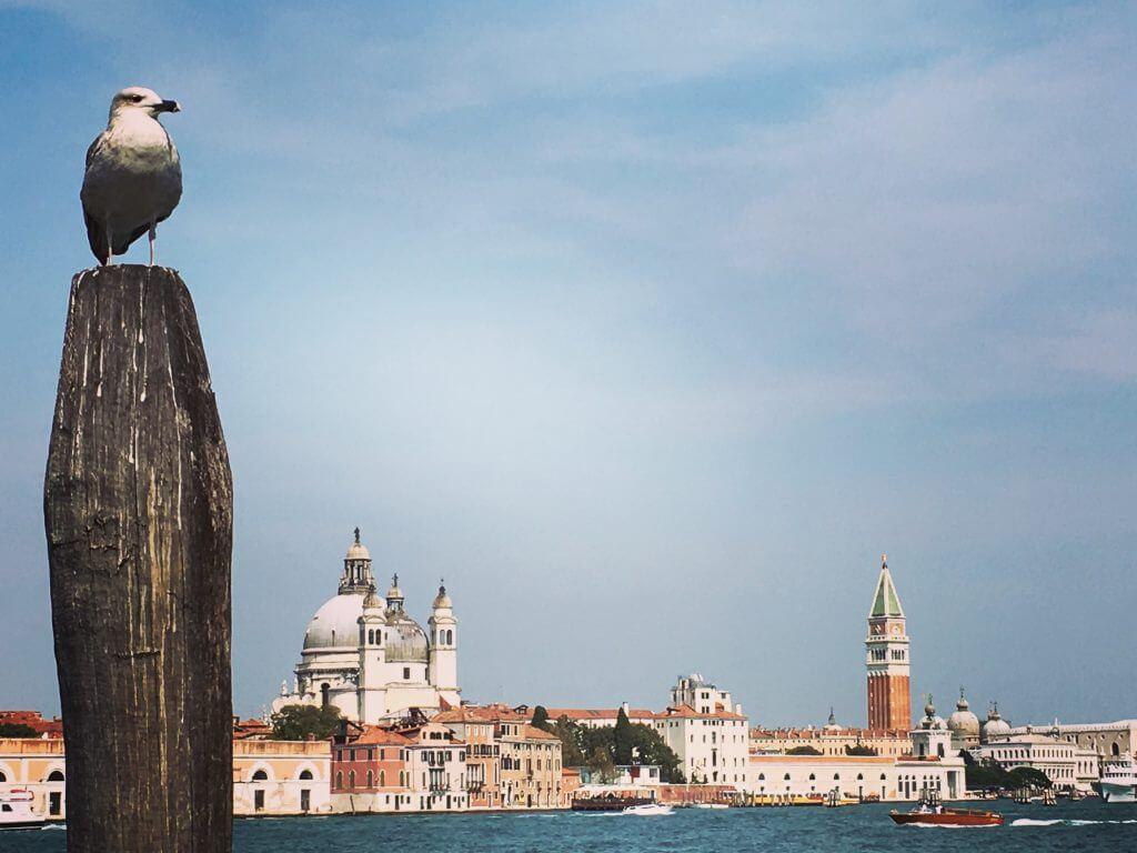 Reisetipp Venedig: Canal Grande