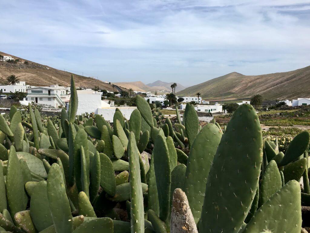 Reisetipp Lanzarote - Pico Redendo