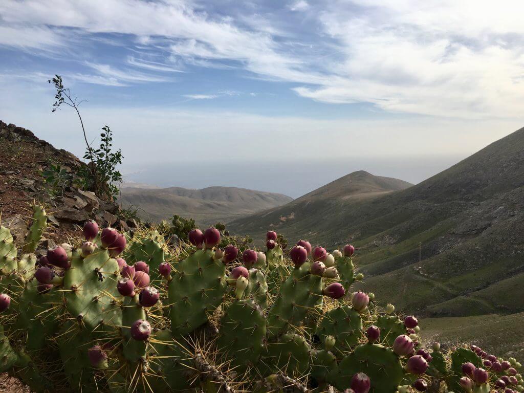 Reisetipps Lanzarote: Pico Redendo