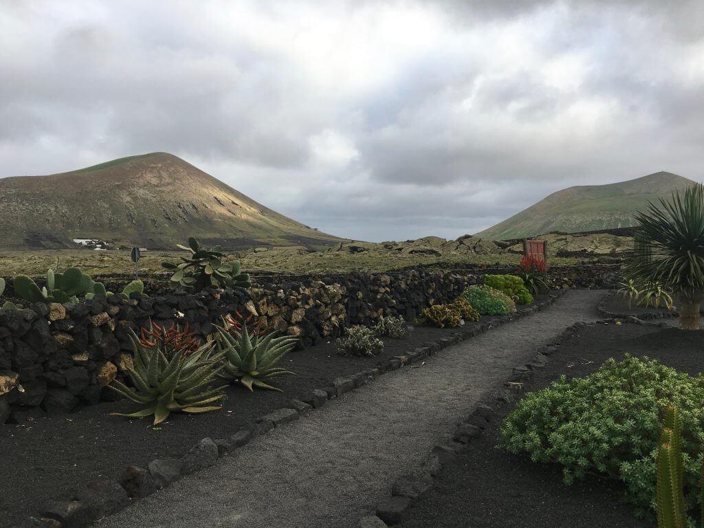 Reisetipps Lanzarote: Kakteengarten - Bodegas el Grifo