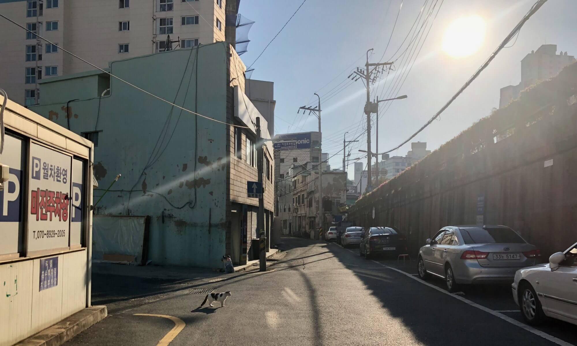 Reisalog: Um die Ecke schauen